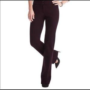 Ann Taylor Loft Charcoal Trouser Straight Leg Sz 0